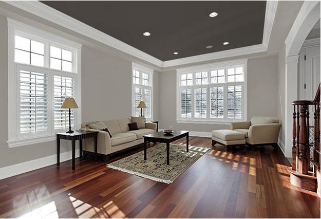 Colored Ceiling Living Room Dark Grey Quinju Com,Vital Proteins Collagen Peptides Powder Reviews